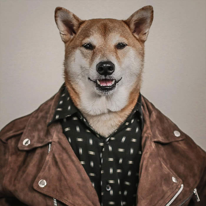 Best-Dressed-Dogs-Menswear-Dog-Sullyburger-com