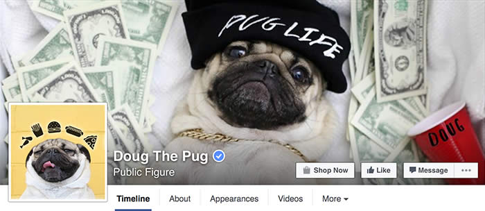 Facebook-Doug-The-Pug-Sullyburger-com