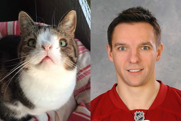Monty-Cat-vs-Radim-Vrbata-Sullyburger